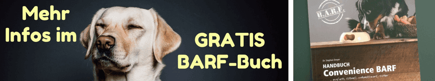 Golden Retriever (Gratis BARF-Buch)