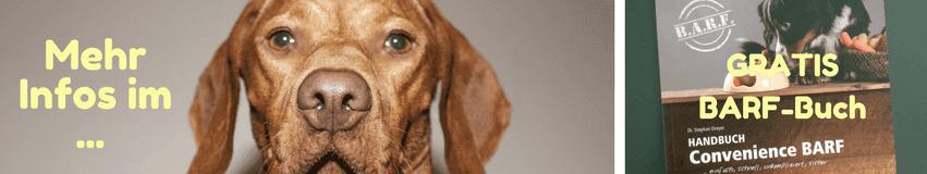 Infografik für kostenlosen Petman BARF Ratgeber mit Hundekopf